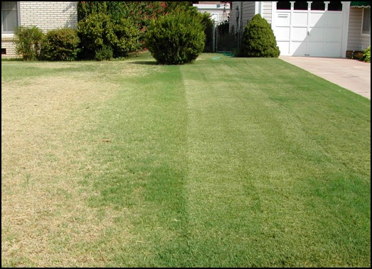 Aeration difference